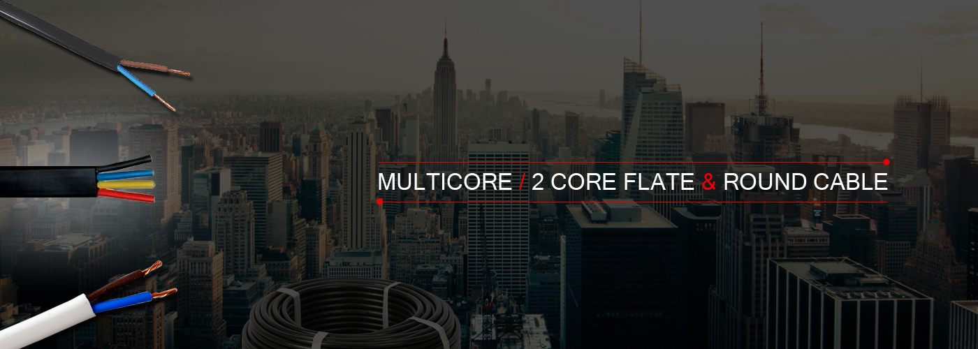 Multi Core Flexible Cable