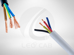 PVC Cable